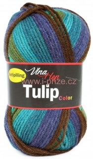 Tulip Color 5201